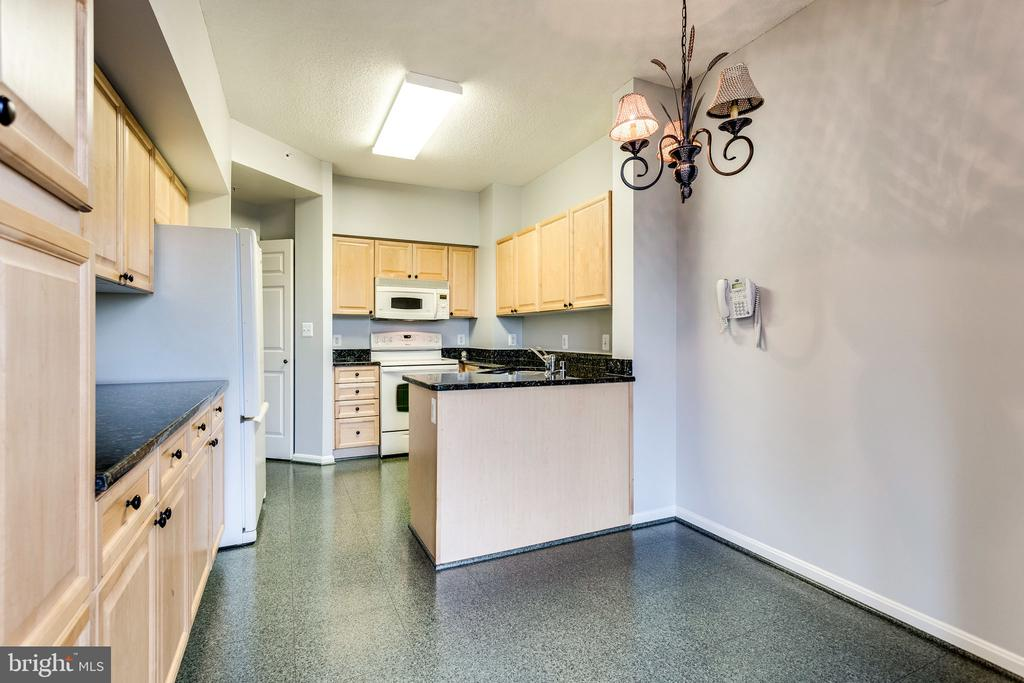 Eat-in kitchen for casual days - 19365 CYPRESS RIDGE TER #418, LEESBURG