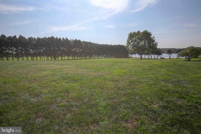 土地 為 出售 在 Millington, 馬里蘭州 21651 美國