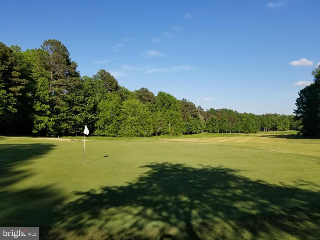 Award winning Arnold Palmer designed golf course - 11404 SEYMOUR LN, SPOTSYLVANIA