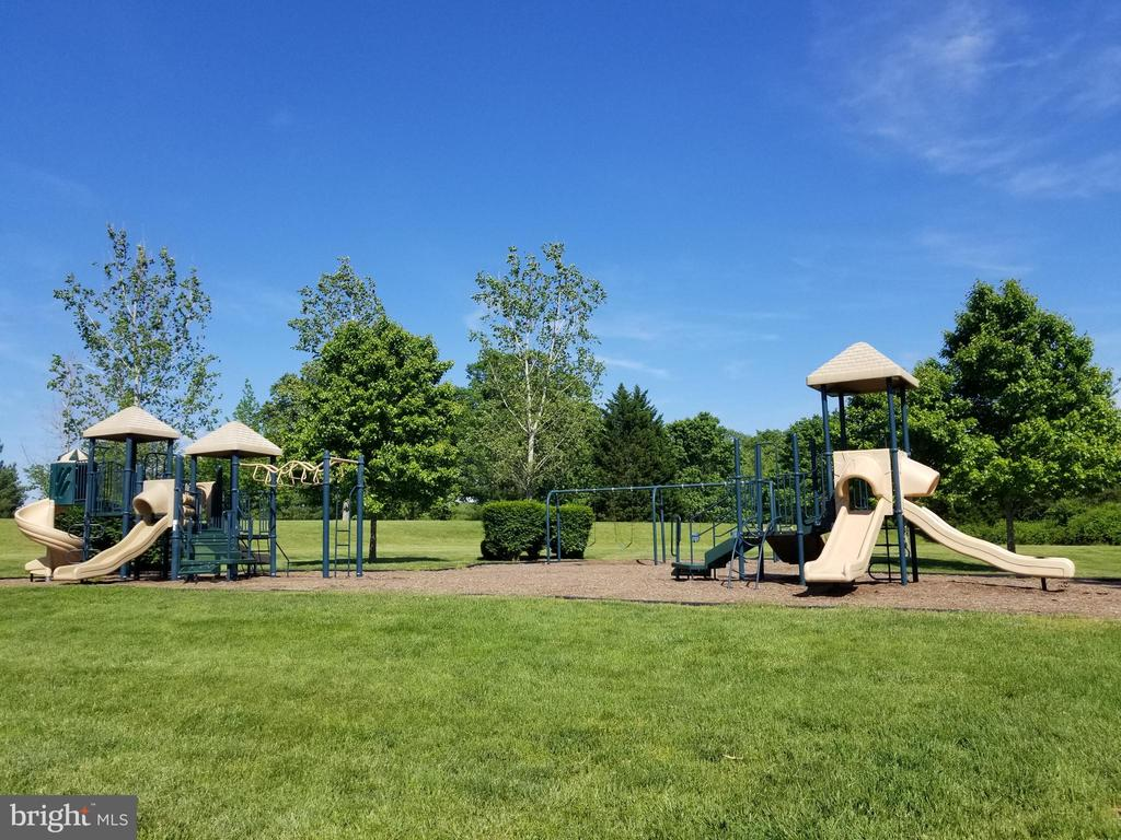Playground - 11404 SEYMOUR LN, SPOTSYLVANIA