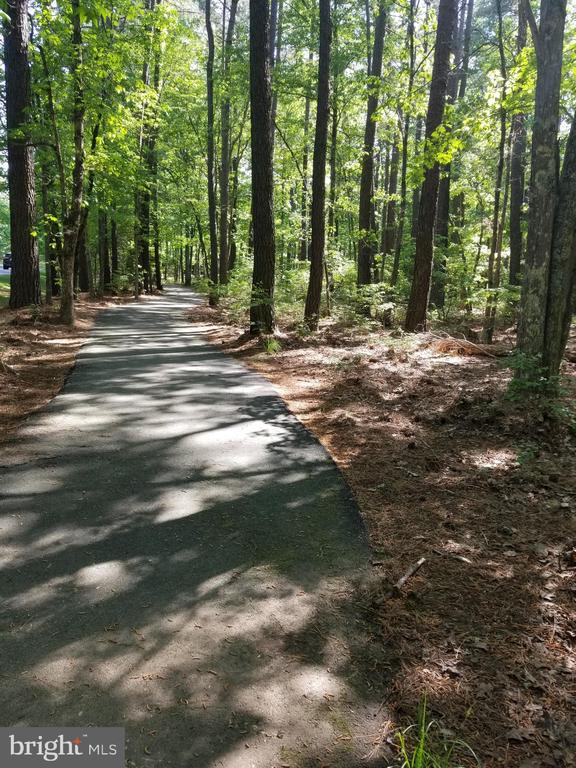 Walking trails throughout the community - 11404 SEYMOUR LN, SPOTSYLVANIA