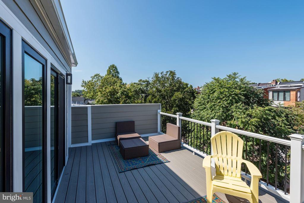 Top-Floor Deck - 1 of 2 Decks - 1715 KENYON ST NW #2, WASHINGTON