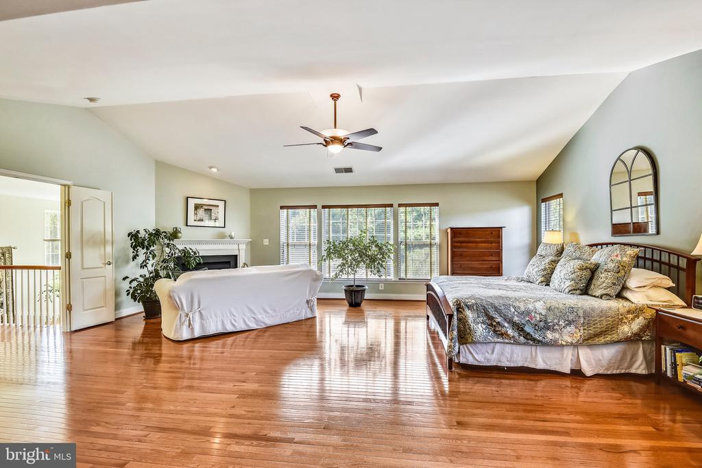 Spacious Master Bedroom with Fireplace - 1221 ADMIRAL ZUMWALT LN, HERNDON