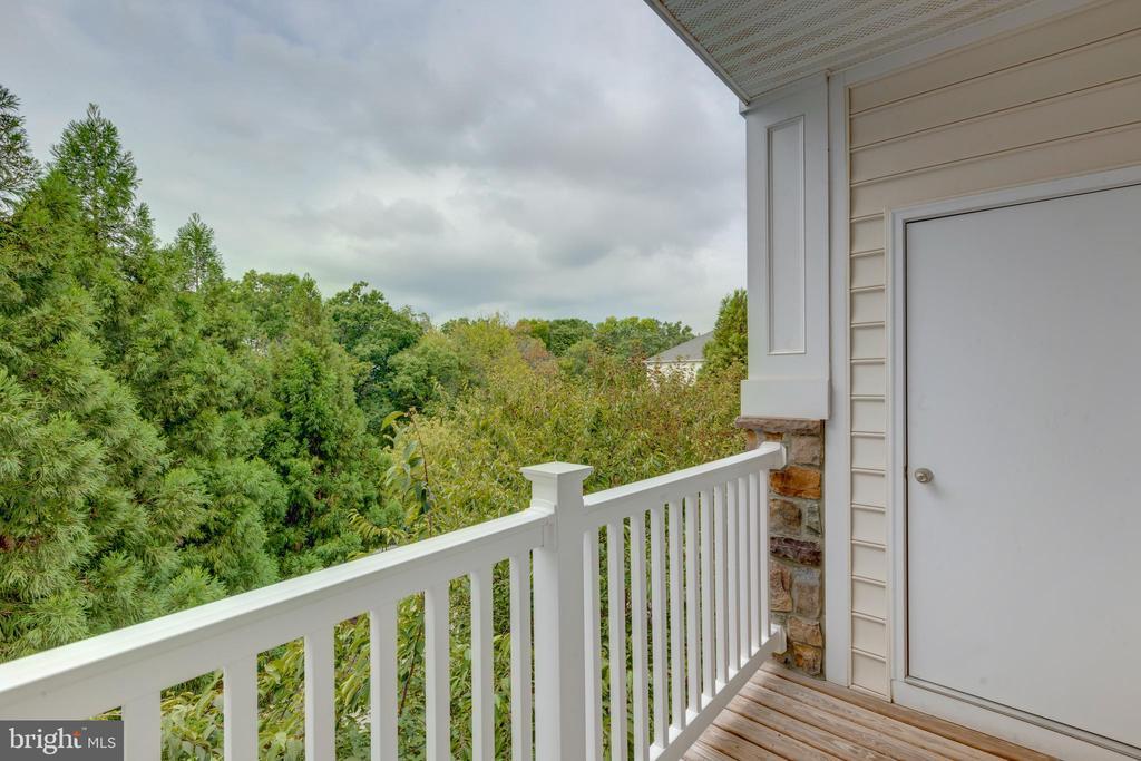 Balcony view - 24701 BYRNE MEADOW SQ #306, ALDIE