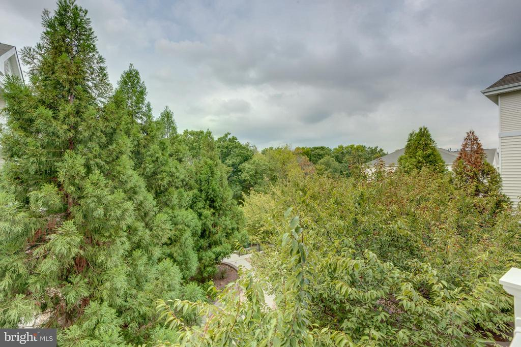 Gorgeous mature trees - 24701 BYRNE MEADOW SQ #306, ALDIE
