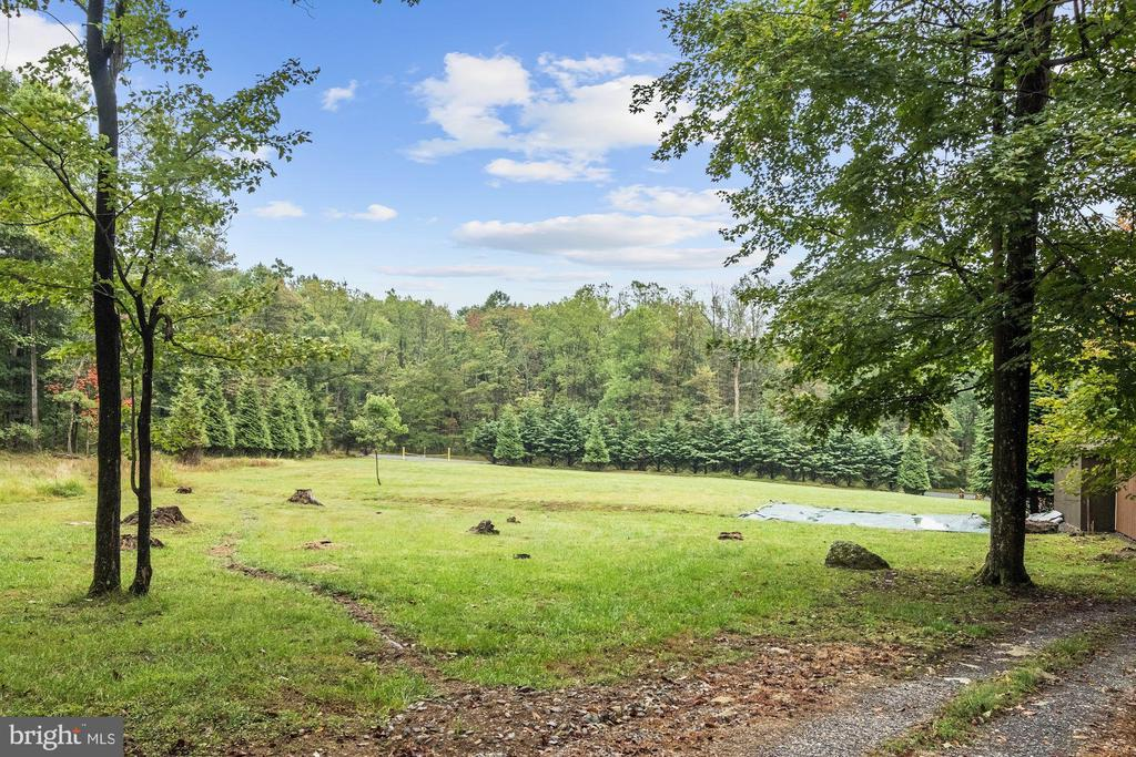 Future Building Pad - 12906 TOWER RD, THURMONT