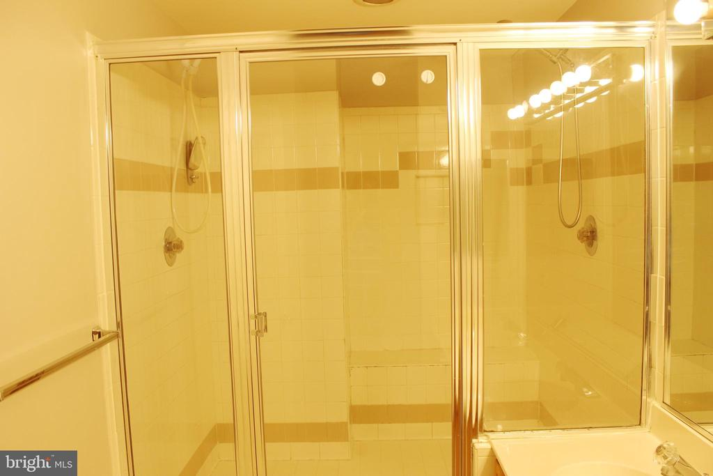 Bath (Master) - 46859 WOODSTONE TER, STERLING