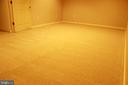 Recreation Room - 46859 WOODSTONE TER, STERLING