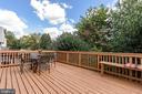 Large deck for entertaining! - 20776 BRIDALVEIL FALLS TER, STERLING