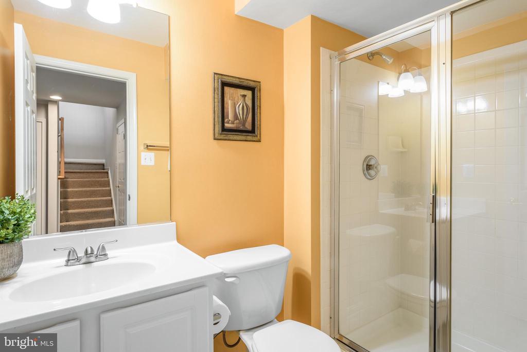 Full bath in basement - 20776 BRIDALVEIL FALLS TER, STERLING