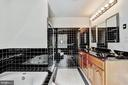 Master Bath - 10545 CLARKSVILLE PIKE, COLUMBIA