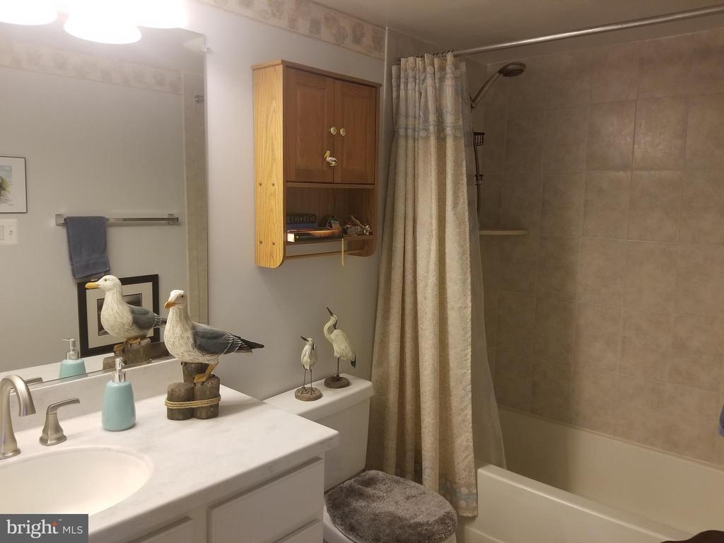 Hall Bathroom - 119 WESTWICK CT #2, STERLING