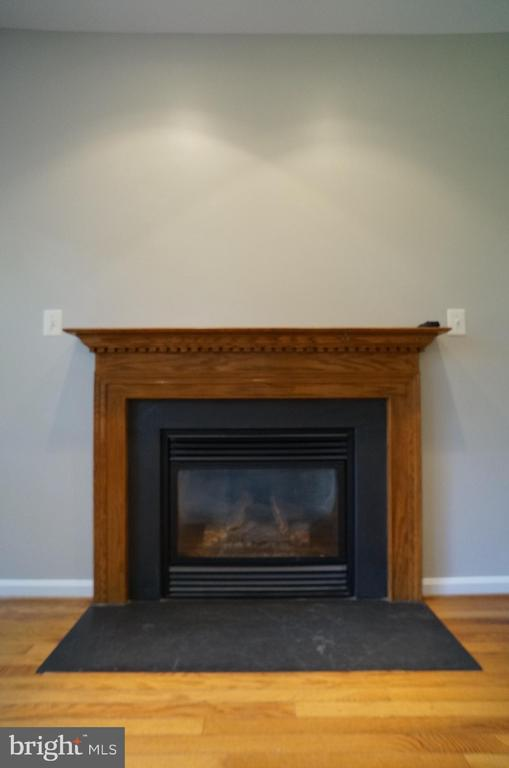 Gas FP with Slate Hearth & Surround, Wood Mantle - 2004 WAVE DR, STAFFORD