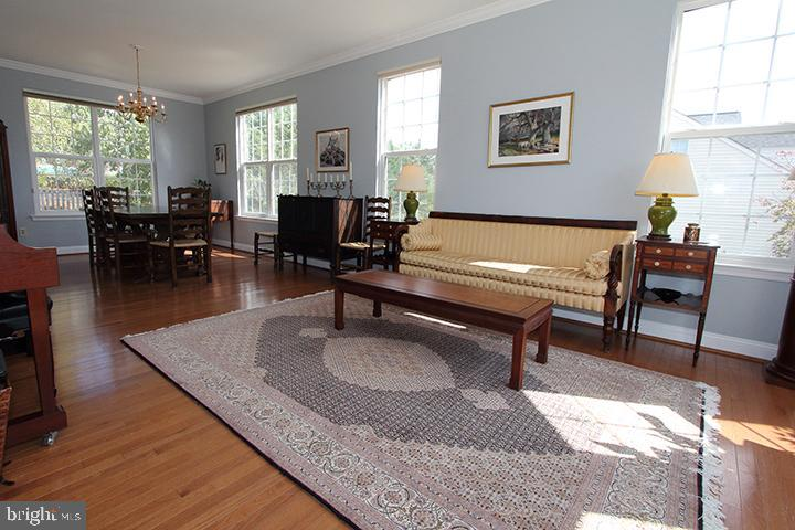 Lots of natural light in the spacious living room - 806 SANTMYER DR SE, LEESBURG