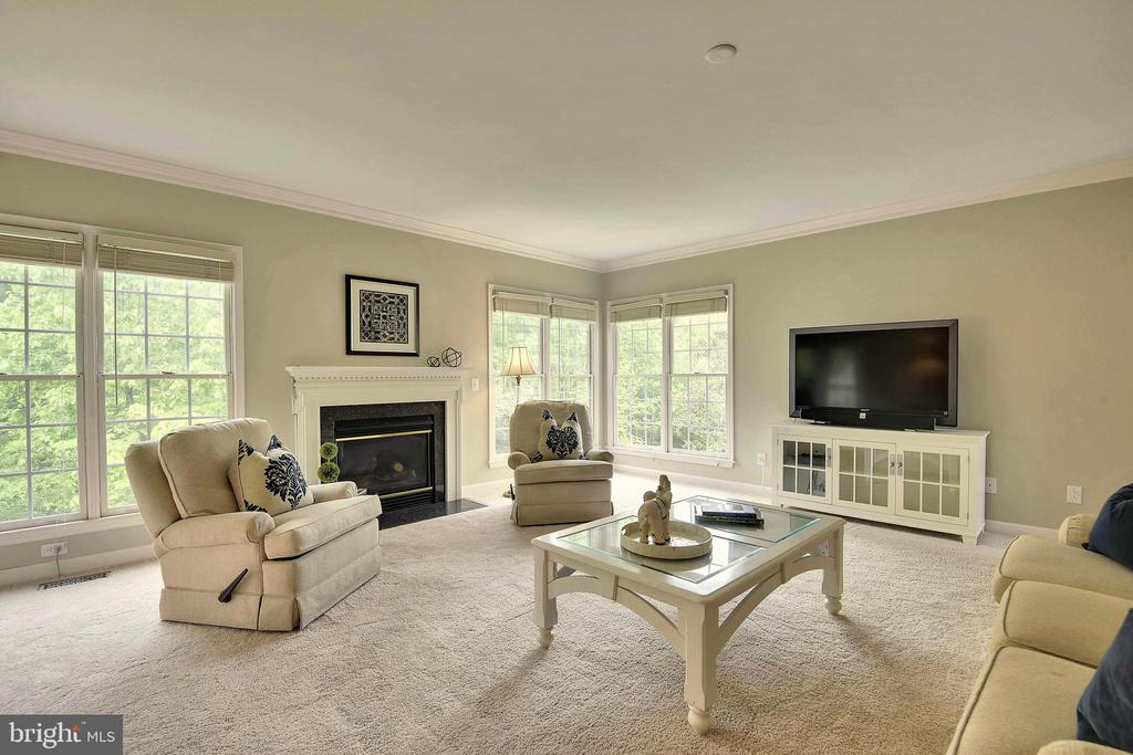 Extra Large Windows provide great natural light! - 6846 CREEK CREST WAY, SPRINGFIELD
