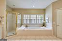 Melt away your day in the Spa Master Bath - 6846 CREEK CREST WAY, SPRINGFIELD