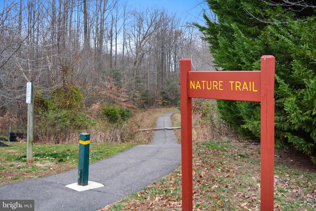 County Maintained trail runs behind the house! - 6846 CREEK CREST WAY, SPRINGFIELD