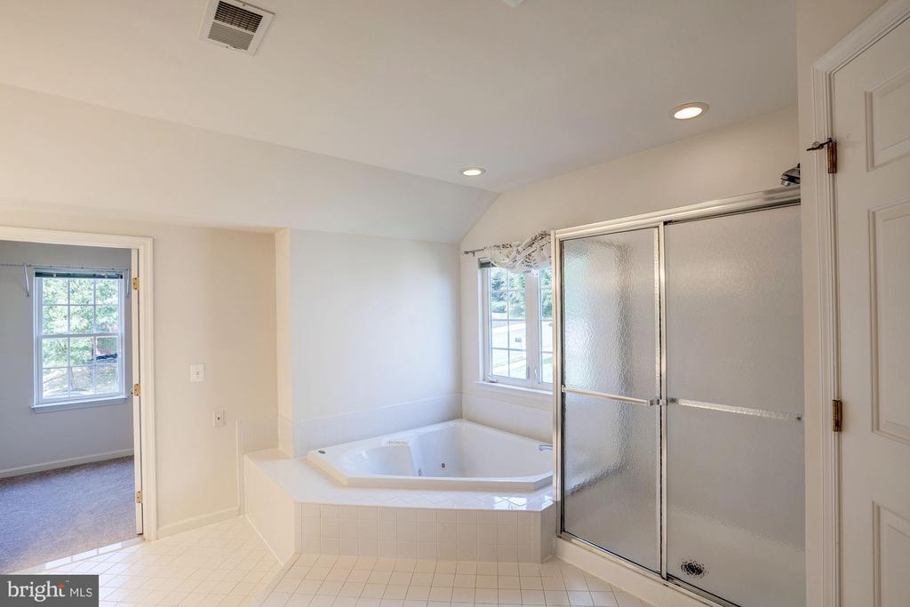 Large shower and soaking tub in master bath - 5675 CLOUDS MILL DR, ALEXANDRIA