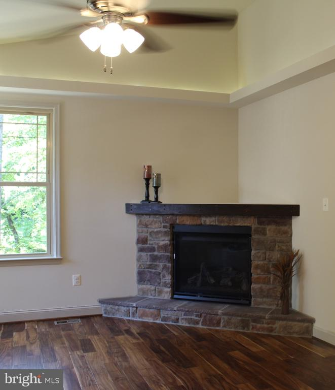 FAMILY ROOM FIREPLACE - 106 WAKEFIELD DR, LOCUST GROVE
