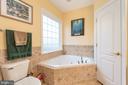 master bath - 14007 JAMES MADISON HWY, ORANGE