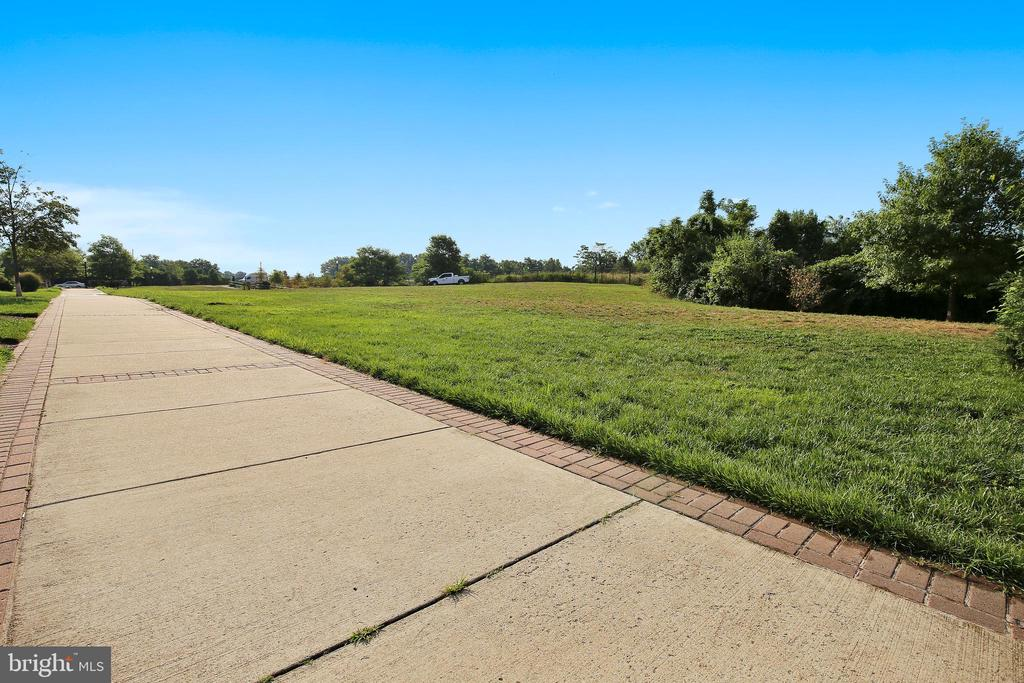 Pups can run and play here! - 3600 S GLEBE RD #222W, ARLINGTON
