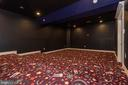 Lower Level Theater Room - 15435 BARNESVILLE RD, BOYDS