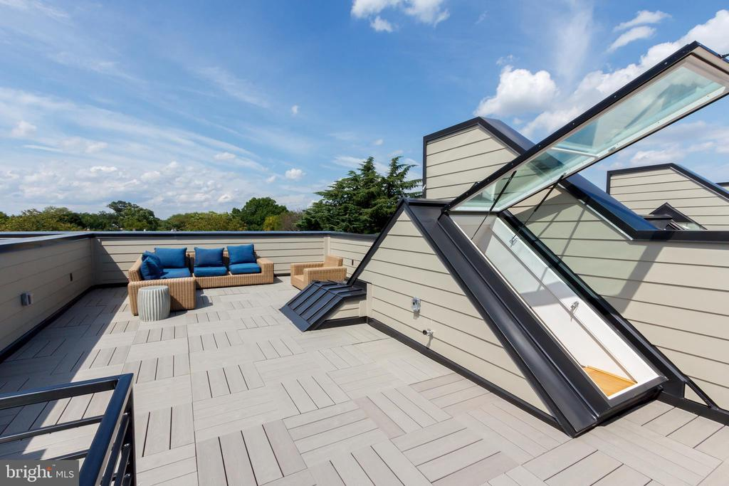 Expansive Rooftop Deck with Views - 1327 D ST SE, WASHINGTON