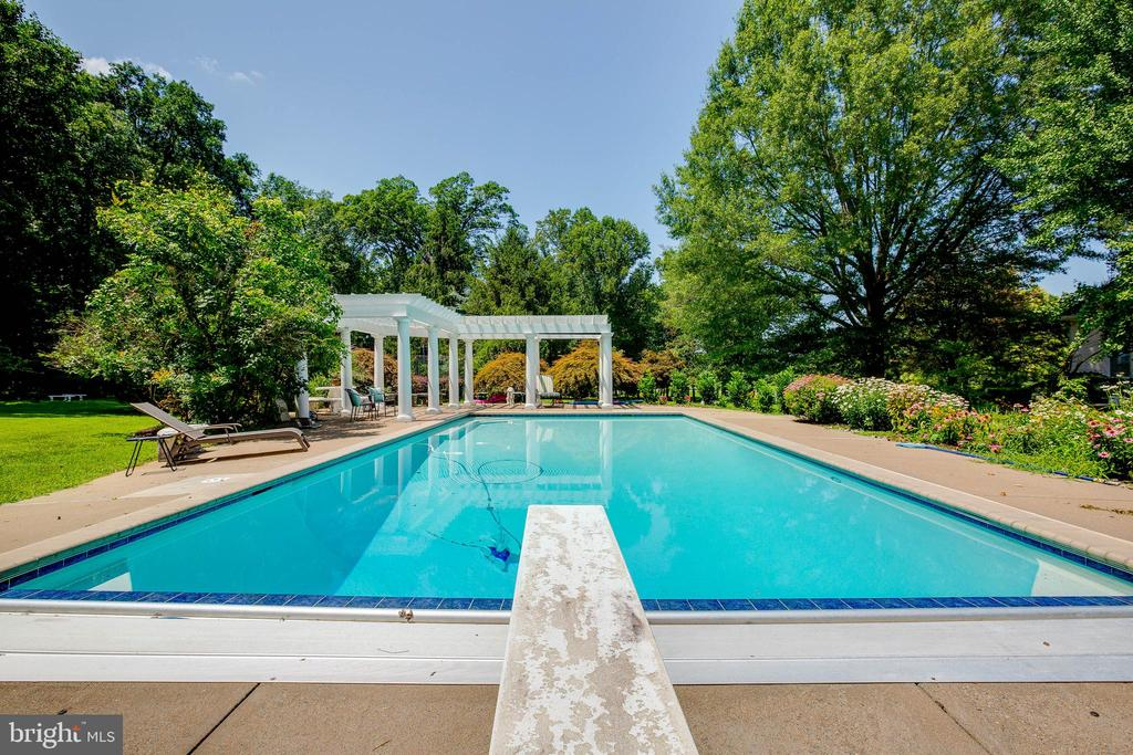 Refreshing pool with diving board - 40843 ROBIN CIR, LEESBURG