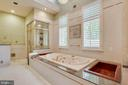 Master bathroom with two showers - 40843 ROBIN CIR, LEESBURG