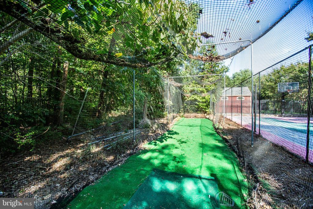Batting cage and driving range - 112 CARROLL CIR, FREDERICKSBURG