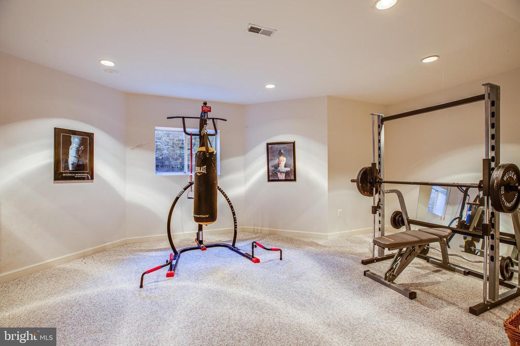 Lower level exercise room - 112 CARROLL CIR, FREDERICKSBURG