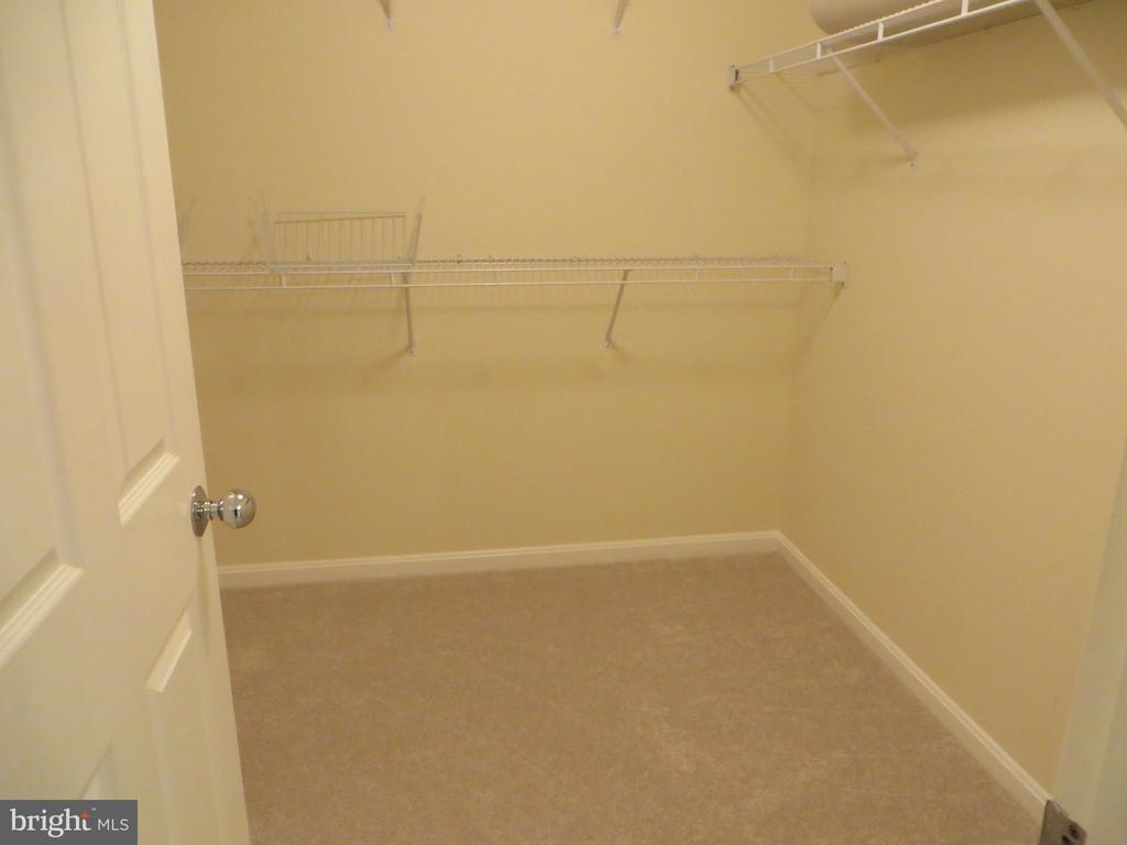 LARGE WALK-IN CLOSET IN MASTER BEDROOM - 336 CAMERON STATION BLVD, ALEXANDRIA