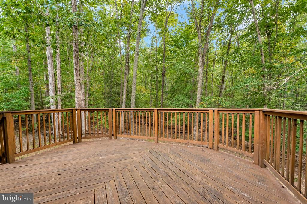 expansive decking to enjoy nature - 903 EASTOVER PKWY, LOCUST GROVE