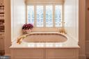 Her bath with leaded glass windows & mosaic tub - 733 N SPRING MILL RD, VILLANOVA