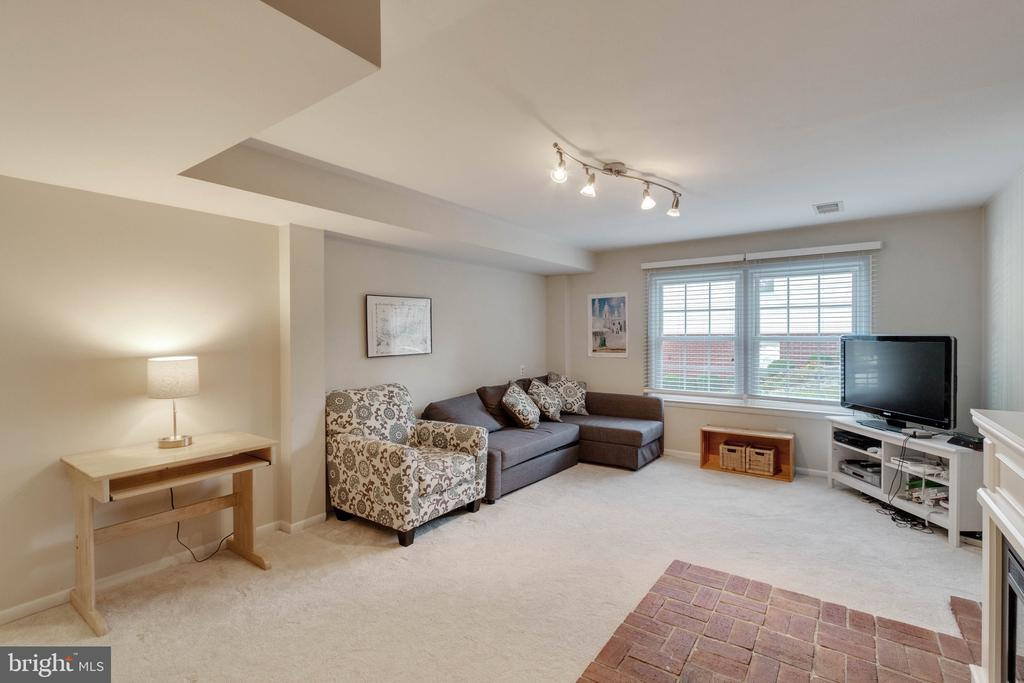 Lower Level Rec. Room - 9083 ANDROMEDA DR, BURKE