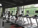 Exercise Room - 2229 POTOMAC CLUB PKWY #32, WOODBRIDGE
