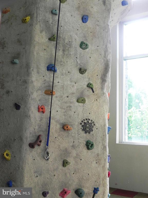 Rock climbing wall - 2229 POTOMAC CLUB PKWY #32, WOODBRIDGE