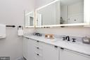 Owners' Bath marble vanity - Model - 1325 D ST SE, WASHINGTON