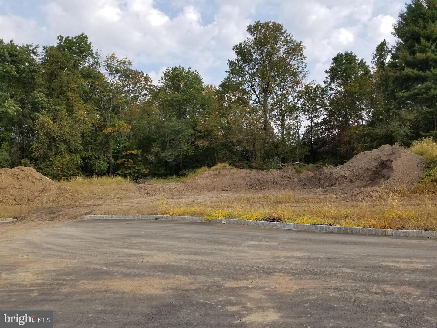 Land for Sale at Princeton, New Jersey 08540 United States