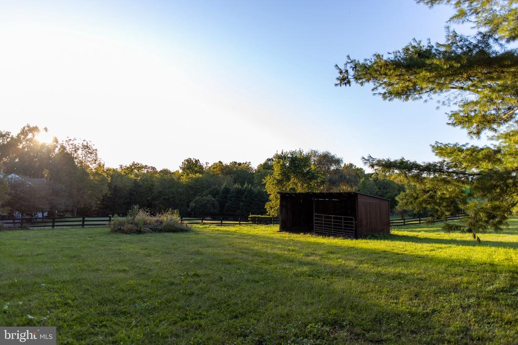 Fenced Paddock with Run-In - 37831 DEERBROOK LN, PURCELLVILLE