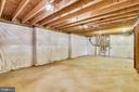 HUGE Unfinished storage room - 39278 KARLINO CT, HAMILTON