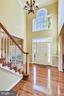 2-story foyer with streams of light. - 39278 KARLINO CT, HAMILTON