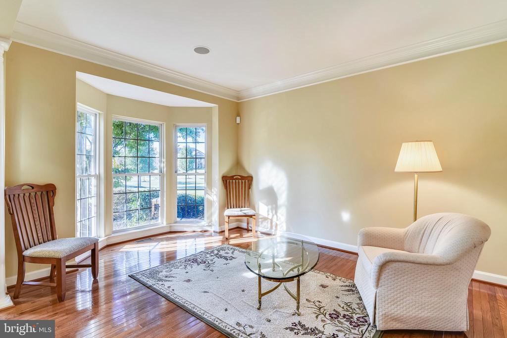 Living room w/ bay window - 39278 KARLINO CT, HAMILTON
