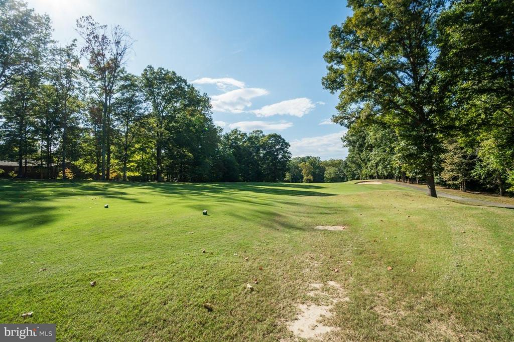 On the second hole of the Golf Course - 103 BIRCHSIDE CIR, LOCUST GROVE