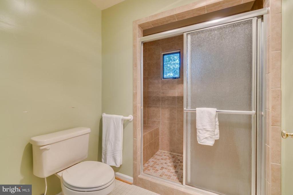 Master bath with tiled shower - 103 BIRCHSIDE CIR, LOCUST GROVE
