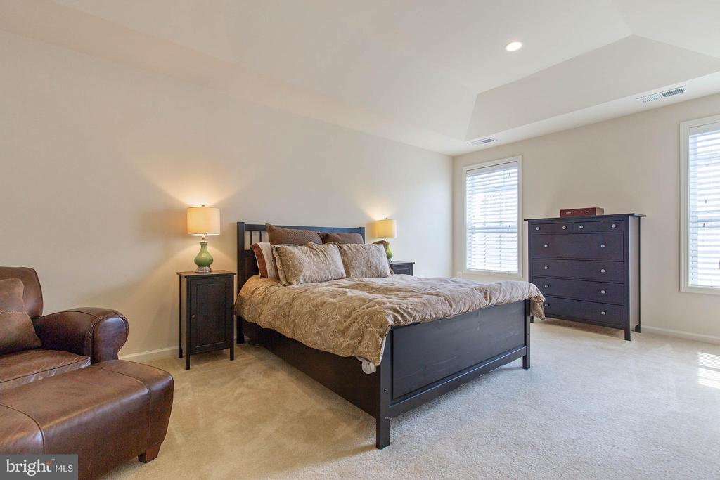 Master bedroom with tray ceiling - 43005 ATOKA MANOR TER, ASHBURN