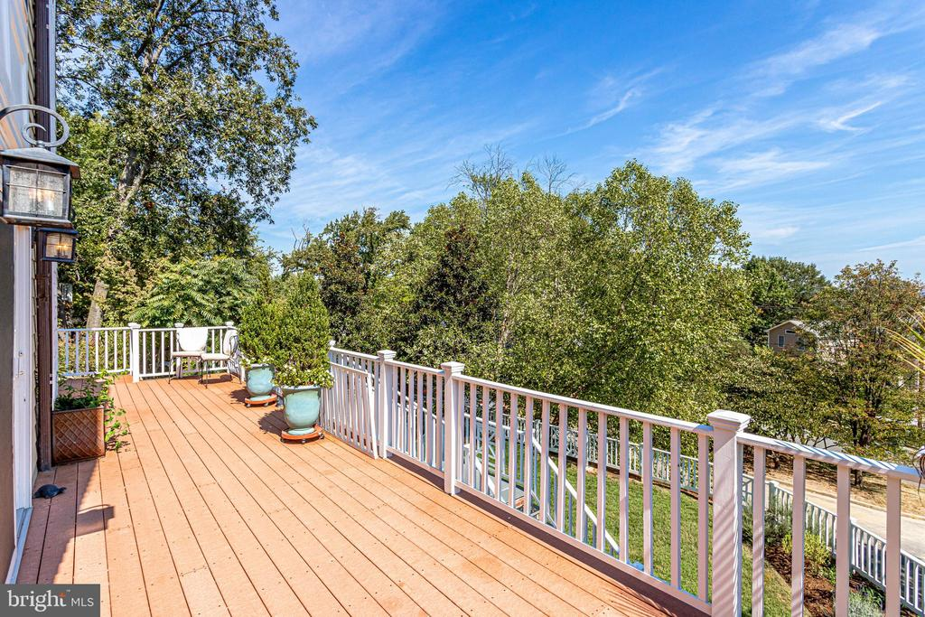 This back-deck makes for effortless entertaining - 307 KENTUCKY AVE, ALEXANDRIA