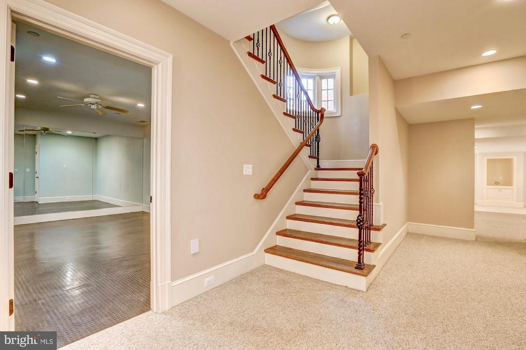 Lower level - 116 E MELROSE ST, CHEVY CHASE