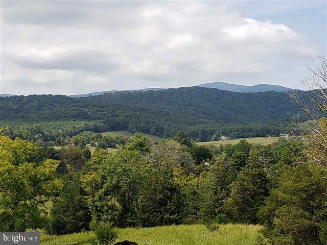 Single Family Homes のために 売買 アット Stanardsville, バージニア 22973 アメリカ