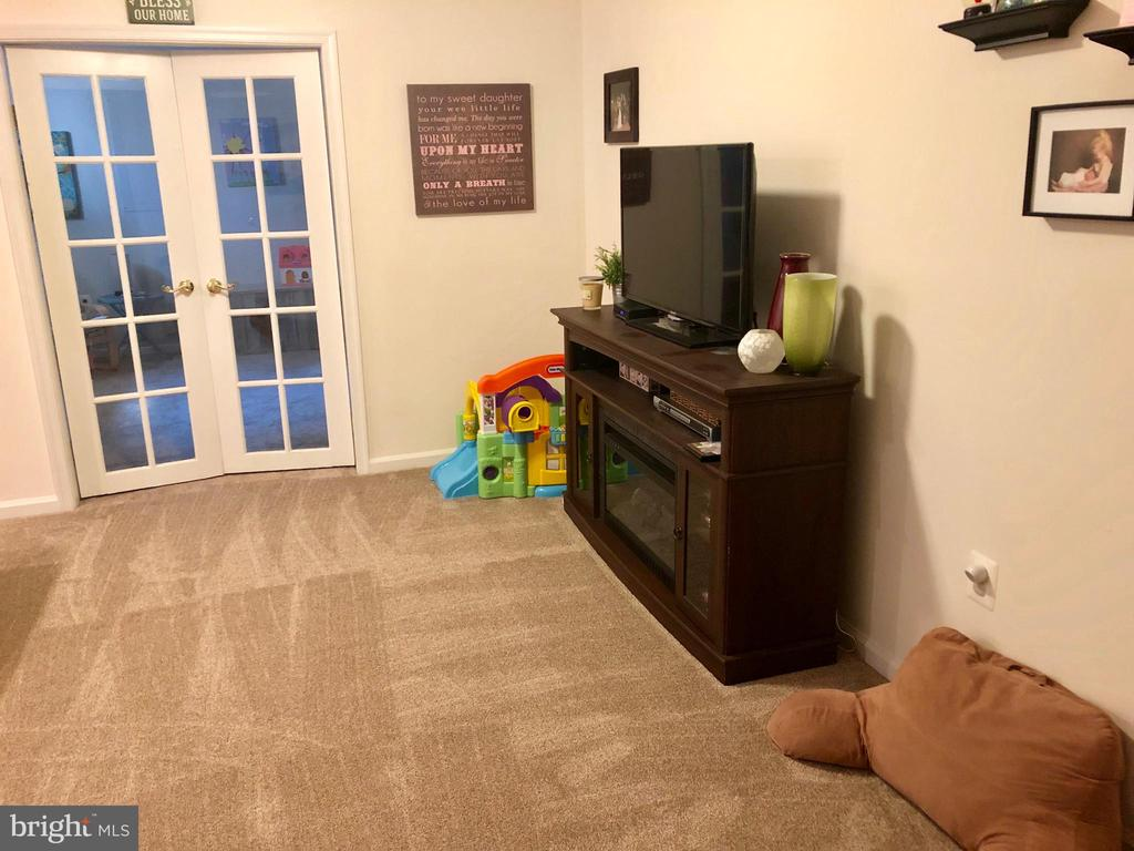 Rec Room Carpet  1 Year Old - 9505 COUNTRY ROADS LN, MANASSAS